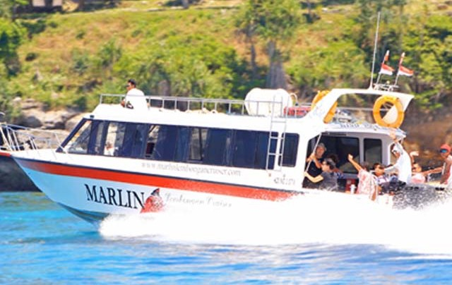 sea marlin express balicruisemurah.com