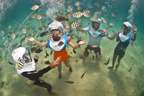 Bali Hai Aquanautss