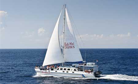Aristocat Sailing Cruise@balicruisemurah.com