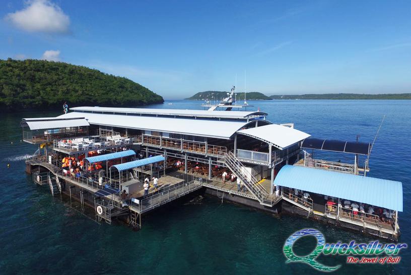 Harga Quicksilver Cruise 2020