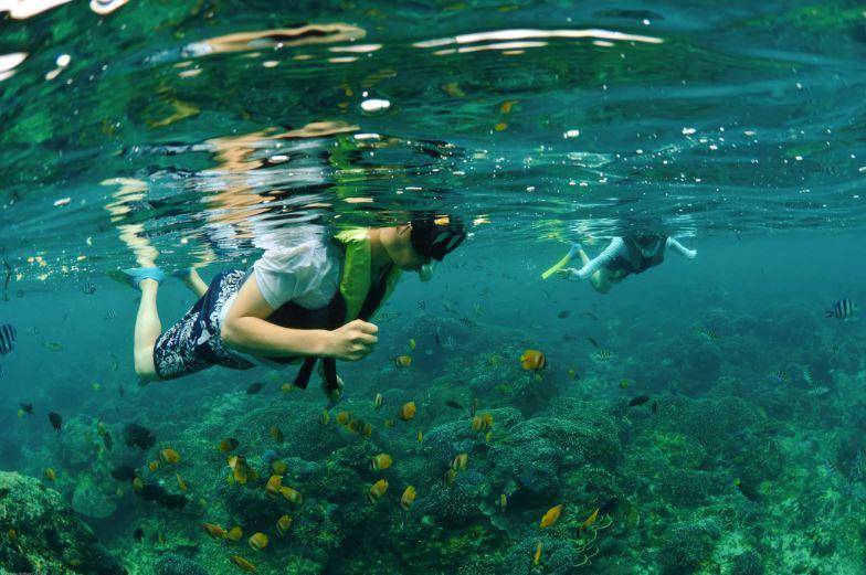Bali Hai Reef Cruise@balicruisemurah.com